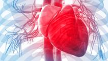 Heart Failure Rates Projected to Increase Dramatically