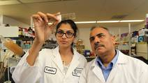 Antioxidant CoQ10 prevents Alzheimer's & Parkinson's in rodents