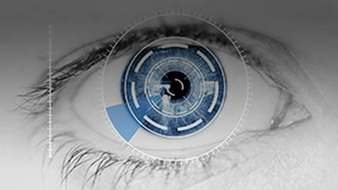 Artificial Retinas Restore Sight to Blind
