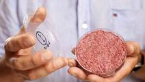 The Future Will Be Full of Lab-Grown Meat