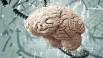 Schizophrenia Breakthrough: Halting protein Degradation is Key
