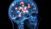 Imaging Reveals how well PTSD Patients will Respond to Psychotherapy