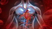 Heart Attack Risk Game-Changer