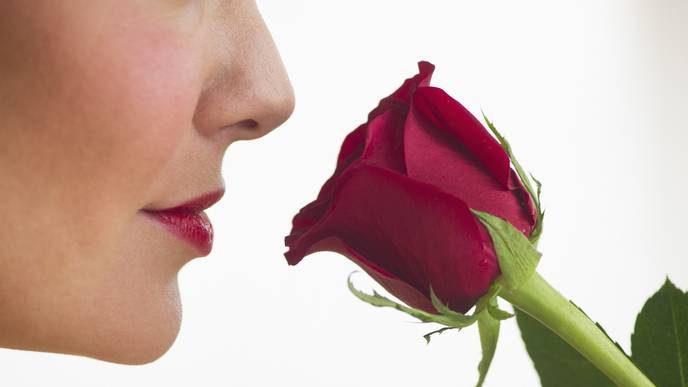 New Smell Test could Aid Early Detection of Alzheimer's and Parkinson's