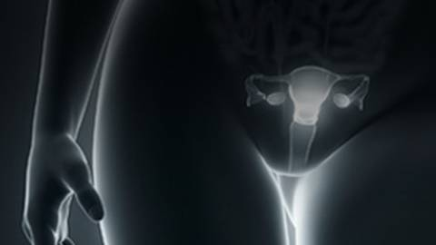 Abnormal Uterine Bleeding (AUB): Impact of Direct Visualization for Earlier Diagnosis