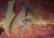 Novel Oral Anticoagulants: Transforming Stroke Prevention in Nonvalvular Atrial Fibrillation