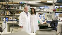 Cancer-Fighting Power Couple Tackles Mysteries of Immune Checkpoint Inhibitors
