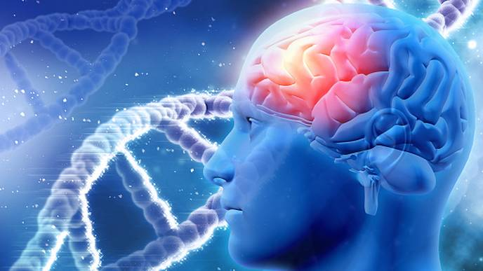 Researchers Identify Genetic Factors that Contribute to Alzheimer's Disease