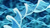 Gene Found to Cause Sudden Death in Young People
