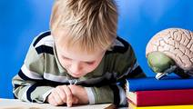 People with Dyslexia have other Brain Differences too, Study Finds