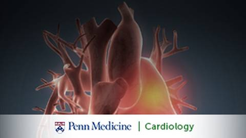 Complex Aortic Disease: Sussing Out a Silent Killer to Save Lives