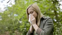 Do Seasonal Allergies Make You More Likely to Get Sick?