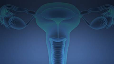 A Sonographer's Guide to the Use of Transvaginal Ultrasonography for Confirming Permanent Contraception Insert Placement
