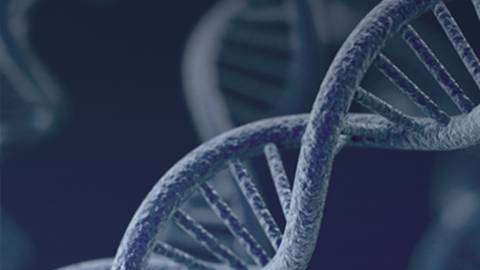 Advances in Genetic Testing: A Focus on Hereditary Cancer
