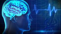 Anesthesia and Surgery during Infancy may Impact White Matter during Childhood