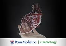Bridging The Cardiology Gap: Care Priorities for Adults With Congenital Heart Disease