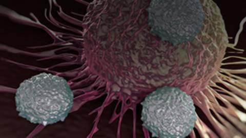 Immuno-Oncology: Perspectives on Current Therapies & Future Developments