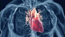 Death Rates from Rheumatic Heart Disease Falling since 1990