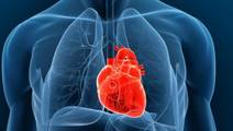 Flabby Heart Keeps Pumping with Squeeze from Robotic Sleeve