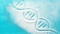 Too Much Sugar Could Be Changing Our Genes, Shortening Life Span