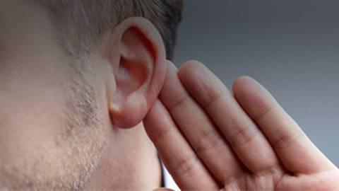 Beyond the Data: Hearing Health Across the Lifespan
