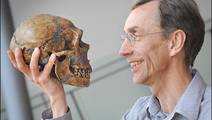 Modern Humans and Neanderthals May Be More Similar Than We Imagined