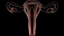 A New and Better Standard of Care Than Blind Biopsy for the Diagnosis of Abnormal Uterine Bleeding
